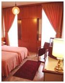 Hotel Canova Milan